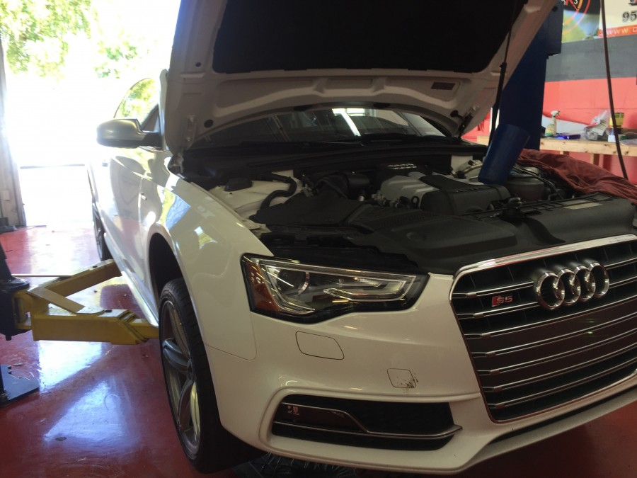 Audi Repair By Davie Motors In Davie Fl Fourringsrepair Com